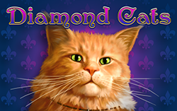 Diamond Cats,