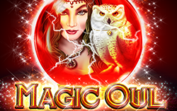 Magic Owl,