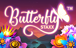 Butterfly Staxx,